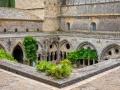 abbaye de Fontfroide/ La terrasse