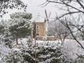Provence / Ventabren sous la neige