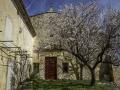 Cazan/ Provence