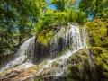 Parc de saint Pons Sainte Baume Provence