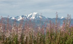 Mont-Blanc vue de la Plagne