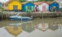 Île d'oléron  haut en couleur
